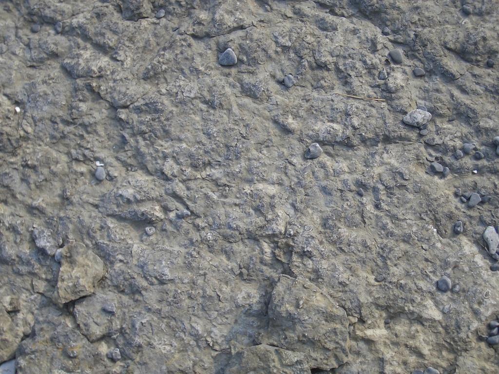 Weathered Rock Surface 6 [image 1024x768 pixels]
