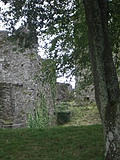 [picture: Restormel Castle 46: Looking up]