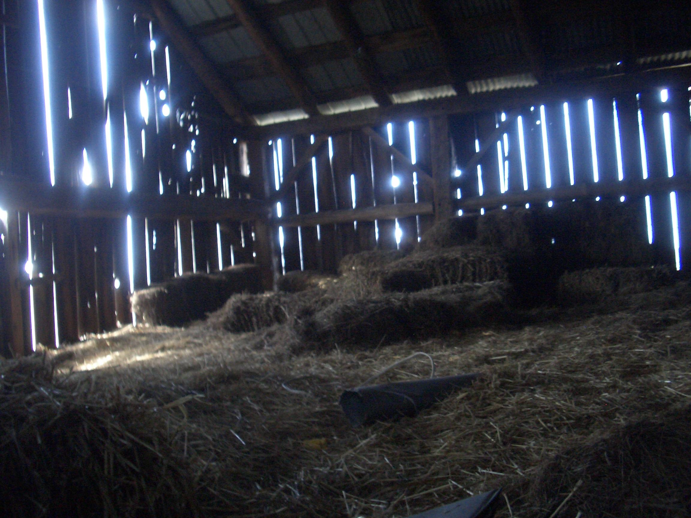 Straw Bales Inside A Barn 2