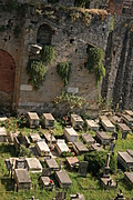 [picture: Jewish Cemetary 4: walled in]
