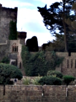 [picture: castle 8]