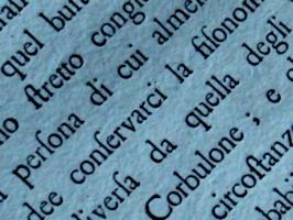 [picture: Eighteenth Century Text: macro shot 5]