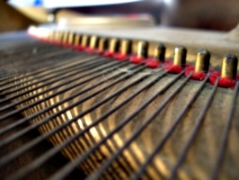[Picture: Piano wire pins]