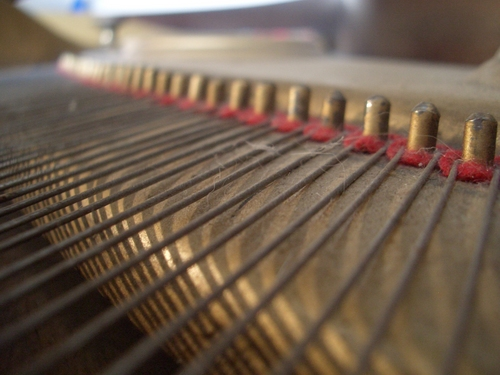[Picture: Piano wire pins]
