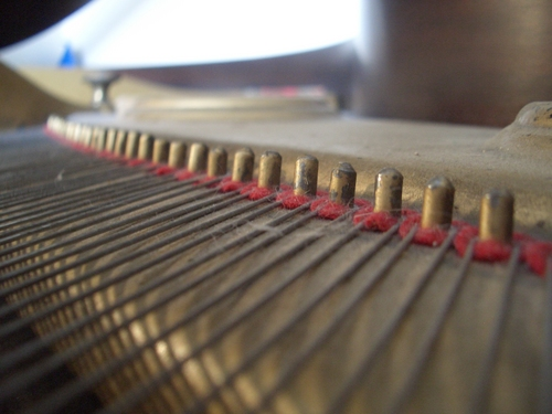 [Picture: Piano wire pins 2]