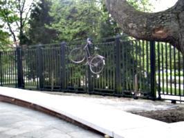 [picture: Suicidal Bike]