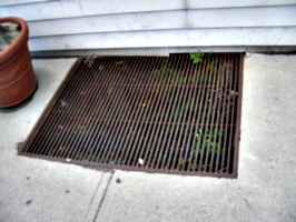 [picture: grating in the street]