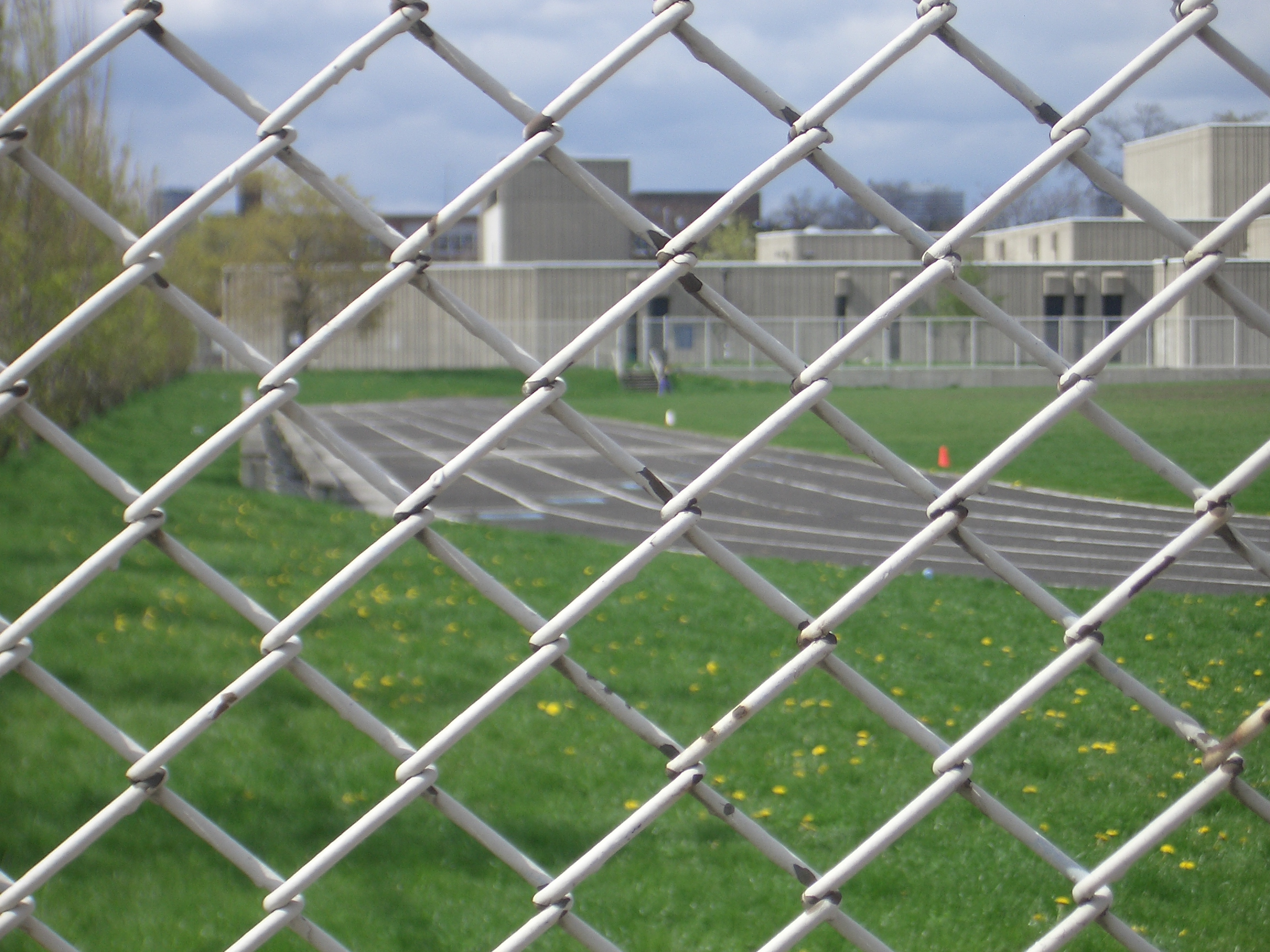 [Picture: Sports field]