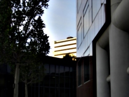 [picture: Sunset in Downtown San José]