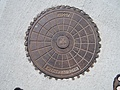 [Picture: Manhole cover]