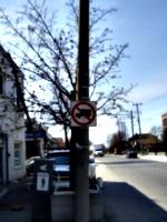 [Picture: No Trucks]