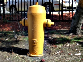 [Picture: Fire Hydrant]