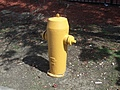 [Picture: Fire Hydrant 2]
