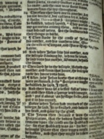 [picture: Geneva Bible page image]