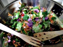 [picture: Salad Bowl 4]