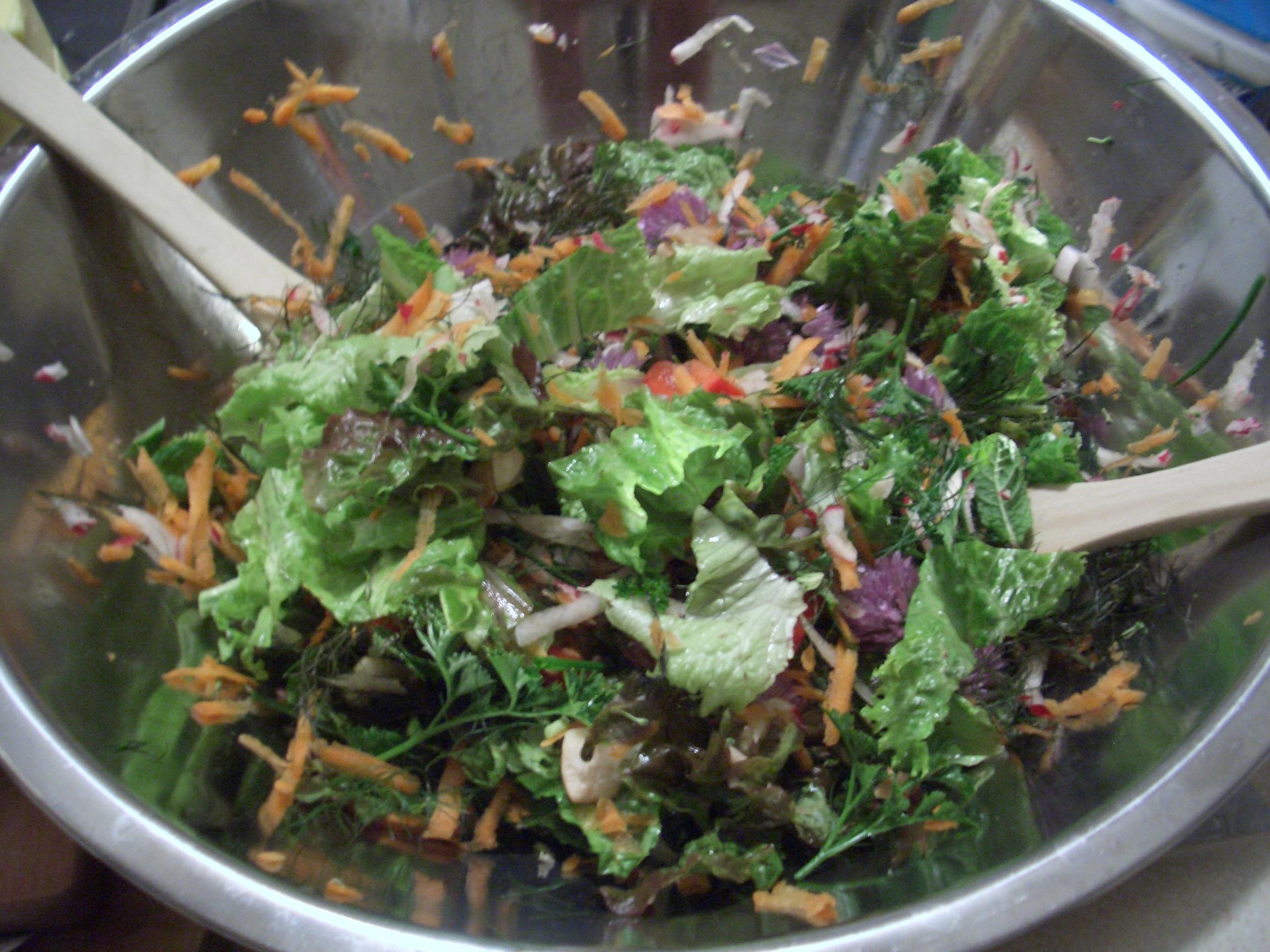 [Picture: Salad Bowl]