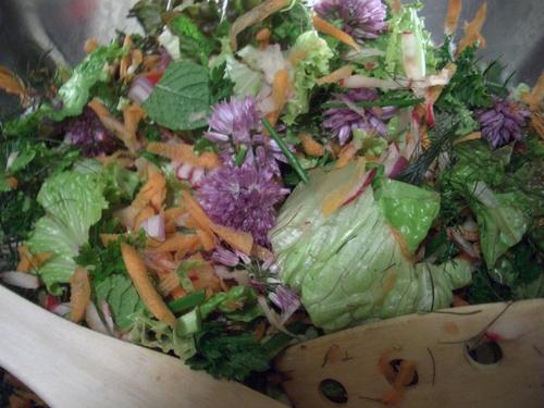 [Picture: Salad Bowl 3]