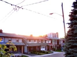 [picture: Evening on Lauder Avenue]
