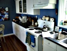 [picture: A blue kitchen]