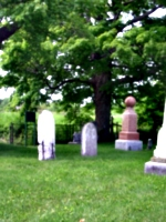 [picture: Graveyard]