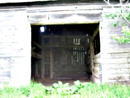 [picture: In the Barn 2]