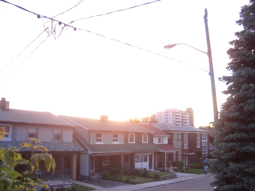 [Picture: Evening on Lauder Avenue]