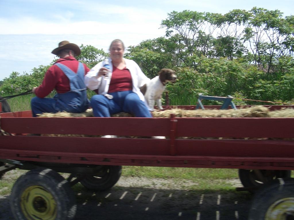 [Picture: Farm Wagon]