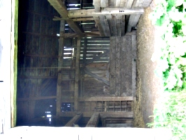 [Picture: In the Barn]