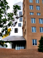 [picture: Stata Center from the back 5]
