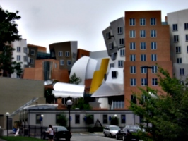 [Picture: Stata Center from the back]