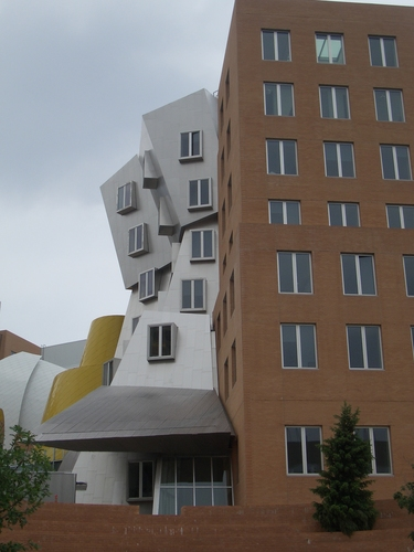 [Picture: Stata Center from the back 4]