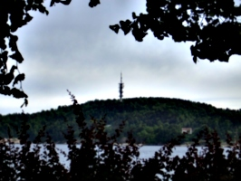 [picture: Communications tower]