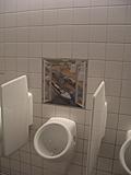 [Picture: Surprising Toilets 2]