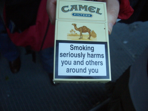 [Picture: Smoking can cause a slow and painful death 2]