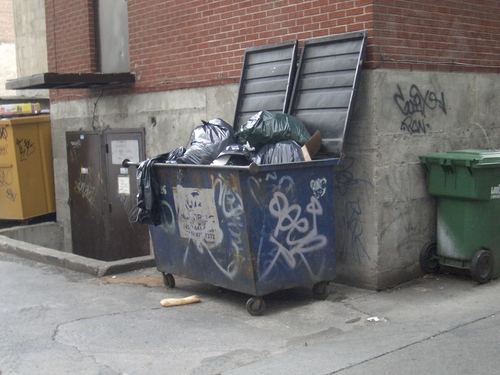 [Picture: Dumpster]