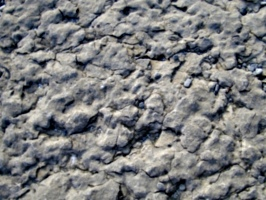 [picture: Weathered Rock Surface 4]