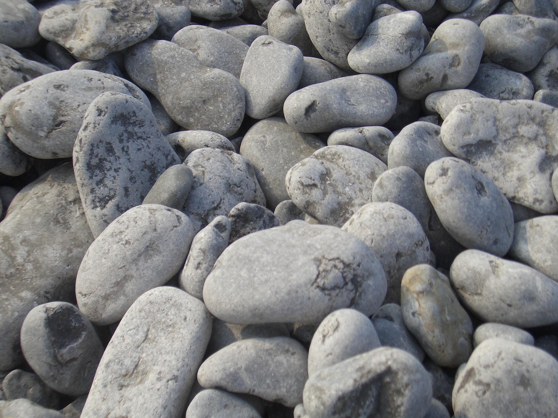 [Picture: Pebbles 2]