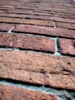 [picture: Brick perspective]