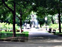 [picture: Fountain in sunlight 2]