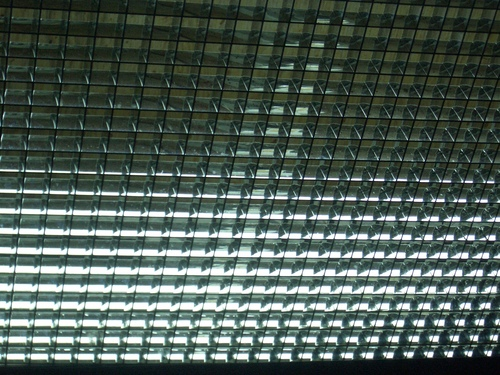 [Picture: ceiling grid texture]