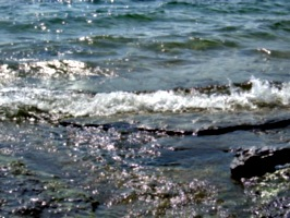 [picture: Water on rocky shore 3]