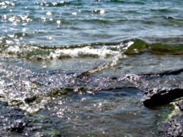 [picture: Water on rocky shore 6]