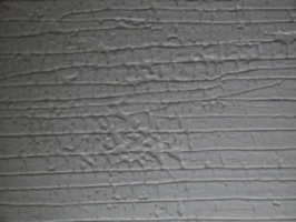[picture: Painted wood texture]