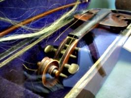 [picture: Violin]
