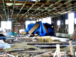 [picture: Inside the barn]