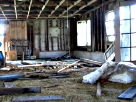 [picture: Inside the barn 5]