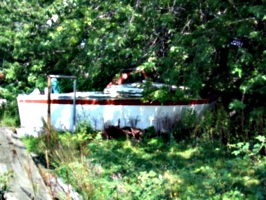 [picture: Old boat in a field]