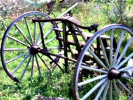 [picture: Old cart]