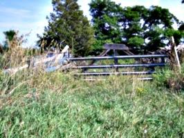 [picture: Farm gate 2]