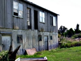 [picture: Old barn 2]